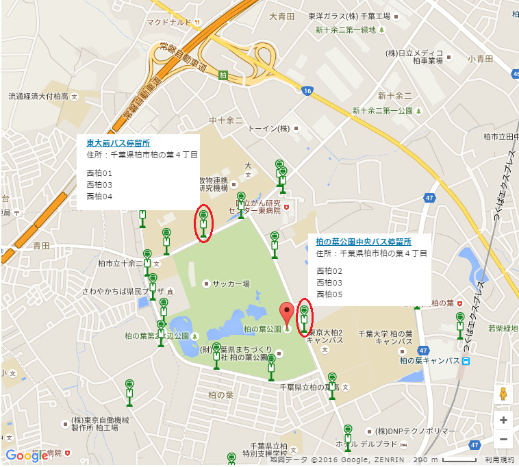 3月12日(土)ホームゲーム バスでのアクセスについて