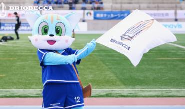 千葉県サッカー選手権大会準決勝 観戦についてのお知らせ